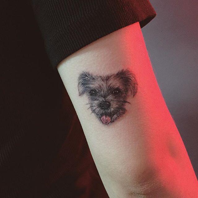 Cachorro realístico no braço