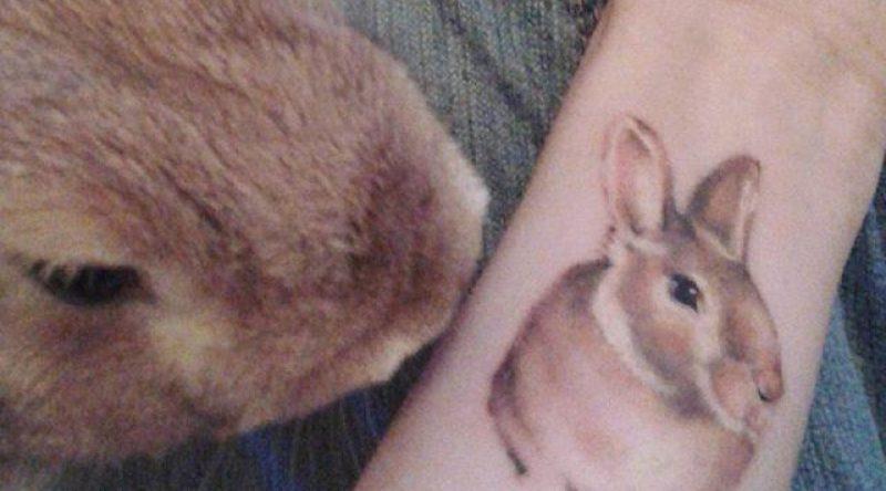 65 tatuagens de coelho em desenhos fofos e marcantes