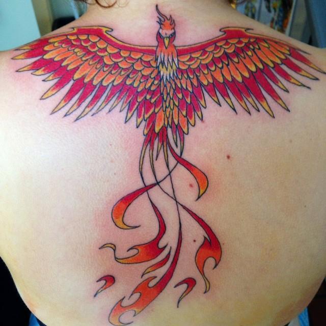 Favoritos 55 Tatuagens de Fênix Lindas (as melhores fotos!!!) AH48