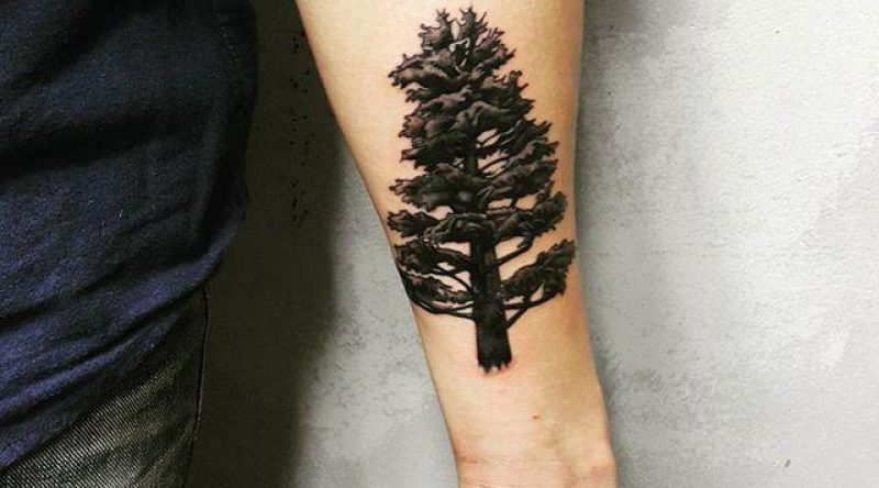 65 tatuagens de árvores que simbolizam a energia ímpar e especial