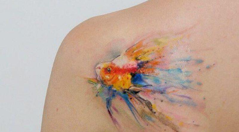 70 tatuagens de peixe que representam esse animal de escamas