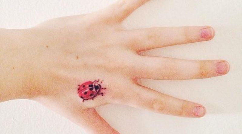 50 tatuagens de joaninhas em fotos e desenhos cheios de personalidade