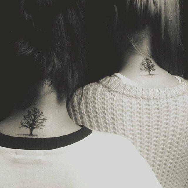 A árvore da vida!