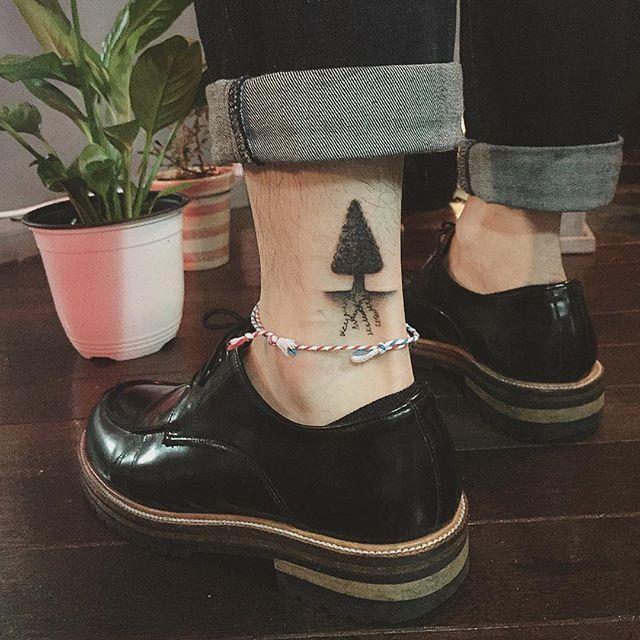 Notável pinheiro monocromático na perna