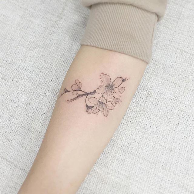 60 Tatuagens De Flor De Cerejeira Fotos Lindas