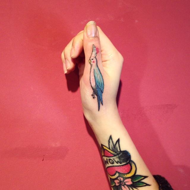 Divertido e colorido passarinho no dedo