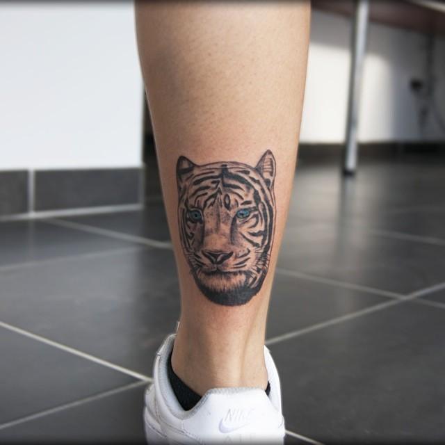 Tigre que representa a força e poder