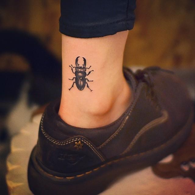 Para os Egípcios, o Escaravelho ou Besouro, seria uma ligação diretamente com a espiritualidade e o Divino.