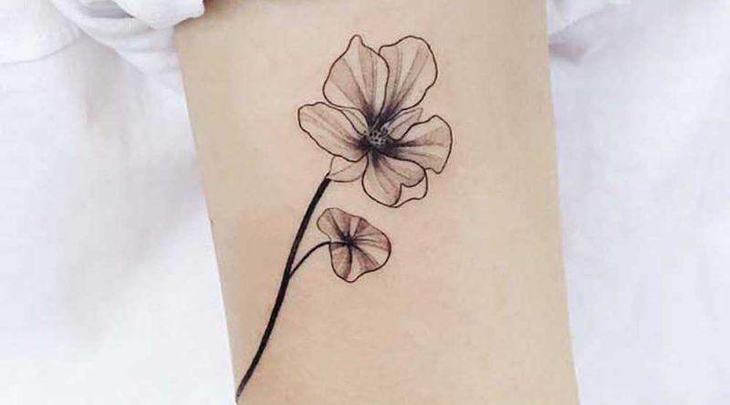 Tatuagem sombreada: características, desenhos e fotos inspiradoras